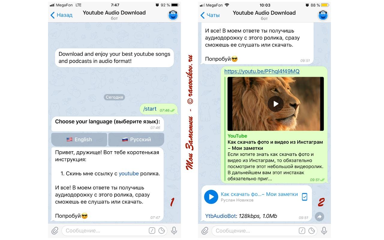 Как скачать аудио из видео с YouTube через Telegram скрин - Мои заметки